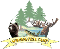 Shining Tree Camp